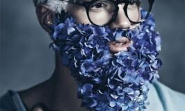 bluebeards3-e1335456121946